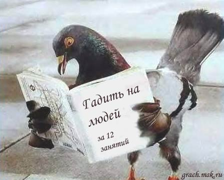 http://ratita.narod.ru/258.jpeg